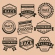 Racing insignia — Stock Vector
