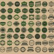Racing badges - vintage style, big green set — Stock Vector