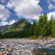 The confluence of two mountain rivers — Stock Photo