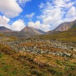 Stock Photo: Alpine tundra