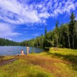 Wild beach on the shore of forest lake - Stock Photo