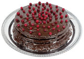Chocolate cake decorated with cranberries — Stock Photo