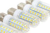 LED bulbs - corn — Stock fotografie