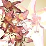 Lilies — Stock Vector #19004665