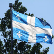 Quebec Provincial Flag — Stock Photo