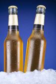 Deux bières — Photo