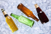 Cooling beers — Stock Photo