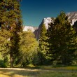 Upper Yosemite Fall — Stock Photo