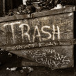 Trash — Stockfoto #37210005