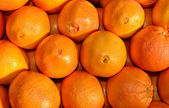 Navel oranges — Stock Photo