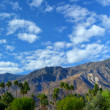 Stock Photo: Palm Springs Pano