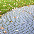 Royalty-Free Stock Photo: Pavement in autumn