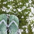 Flip-flops after hailstorm — Stock Photo
