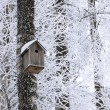 Birdhouse at winter — Stock fotografie