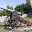 Cannon — Stock Photo #35079351