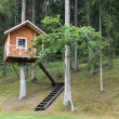 Tree house in the woods — Stock Photo