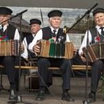 Three men playing accordion — Stock Photo #49087433