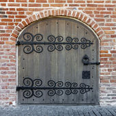 Ornamented doors — Stock Photo