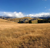 Castle Hill Vertical Panorama, New Zealand — Stock Photo