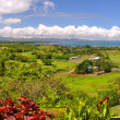 Panorama of the Fijian West Coast. — Stock Photo #13562112