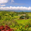 Panorama of the Fijian West Coast. — Stock Photo