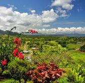 Vertical Panorama of the Fijian West Coast. — Stock Photo