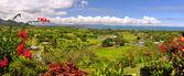 Panorama of the Fijian West Coast. — Stock Photo