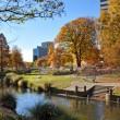 Christchurch City & Avon River in Autumn — Stock Photo