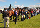 Equestrian Horses, Riders and Supporters at The 2012 Canterbury — Stock Photo