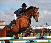Equestrian Competition at the 2012 Canterbury AMP Show. — Stock Photo