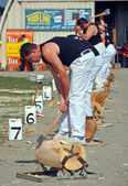 Competitor in the Underhand Wood Chopping at the 2012 Canterbur — Foto Stock