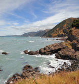 Kaikoura Vertical Panorama Looking South, New Zealand — Stock Photo