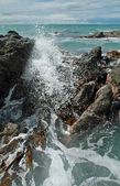 Crashing Waves, Rocks & Kelp — Stock Photo