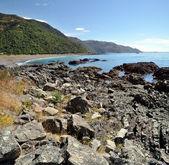 Kaikoura Vertical Panorama, New Zealand — Stock Photo