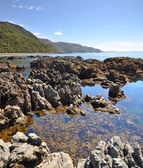 Kaikoura Rock Pool Vertical Panorama, New Zealand — Stock Photo