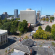 Panoramic view of the Christchurch (New Zealand) city skyline. — Stock Photo