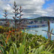 Stock Photo: Flax Flowers & Early Pohutukawin Wellington