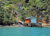 Boat House in The Marlborough Sounds, New Zealand. — Stock Photo