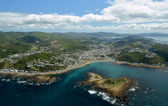 Aerial View of Wellington City from Island Bay. — Stock Photo