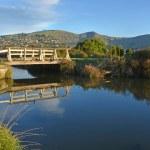 Black Heron Fishing on a Heathcote River Bridge — Stock Photo #37887243