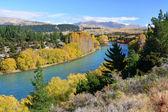 Clutha River & Bridge in Autumn, Otago New Zealand — Stock Photo