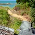 The Track To The Beach at Ngaio Bay, Abel Tasman National Park. — Stock Photo