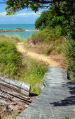 The Track To The Beach at Ngaio Bay, Abel Tasman National Park. — Stock Photo