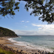 Noosa National Park Beach, Queensland Australia. — Stock Photo