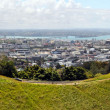 Stock Photo: Panoramic View of Auckland City from Mount Eden.