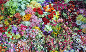 Flower stall at Ben Tanh Market, Ho Chi MInh City. — Stock Photo