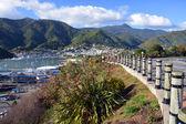 Picton ciudad y puerto de disco queen charlotte. — Foto de Stock