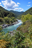 The majestic Buller River Enters the West Coast Buller Gorge. — Stock Photo