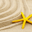 Stock Photo: Yellow seastar.