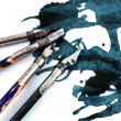 Ink pens. — Stock Photo #30032441